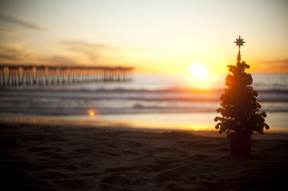 xmas-tree-sunset-beach