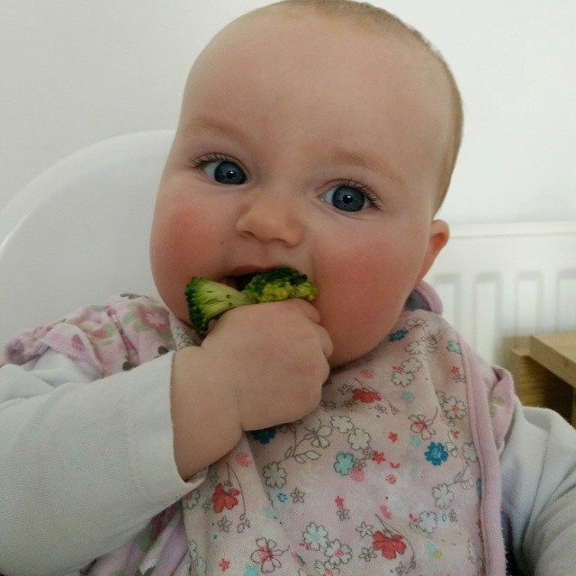 """A"" trying her first bit of solid food. #BabyLedWeaning #ProudDad https://vine.co/v/O3LaPYHu77w #POTD"