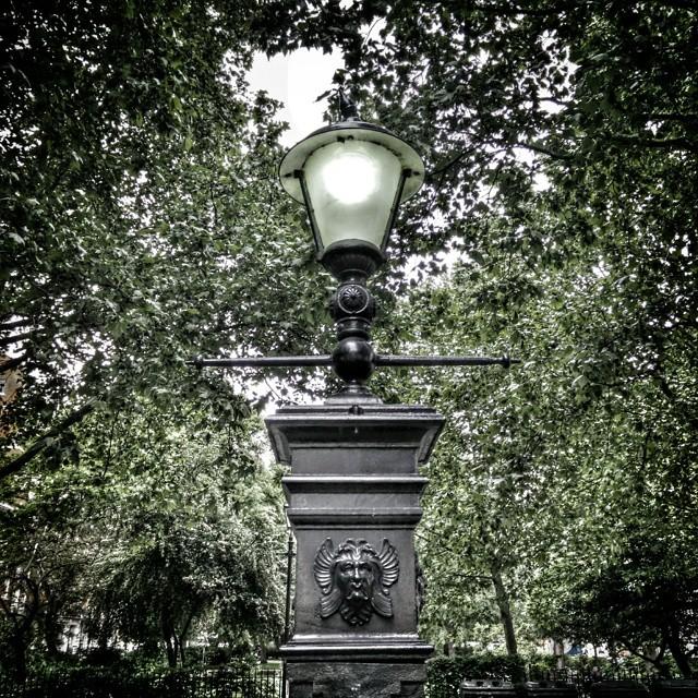 I love lamp. #POTD