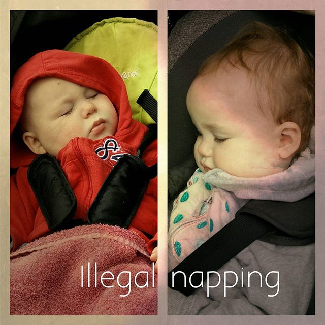 #IllegalNapping #PoorlyBabies #POTD