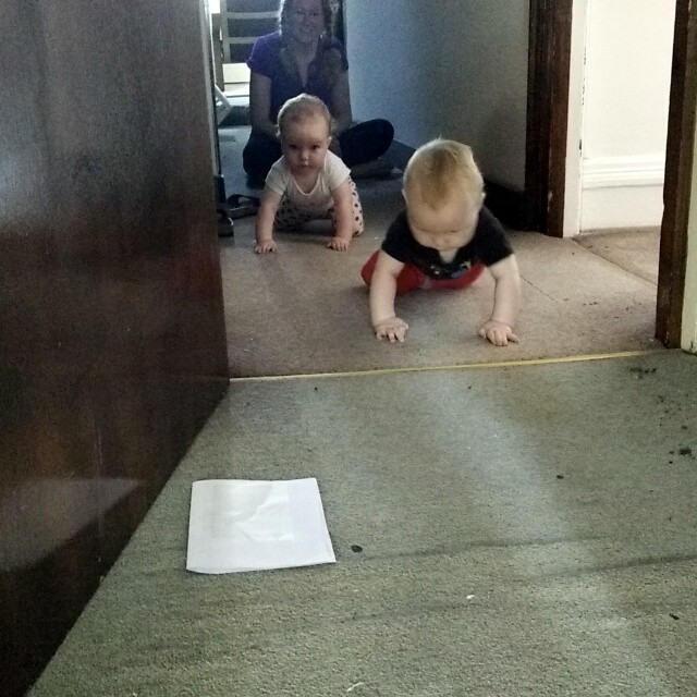 And then they crawled #BabyRacers #POTD