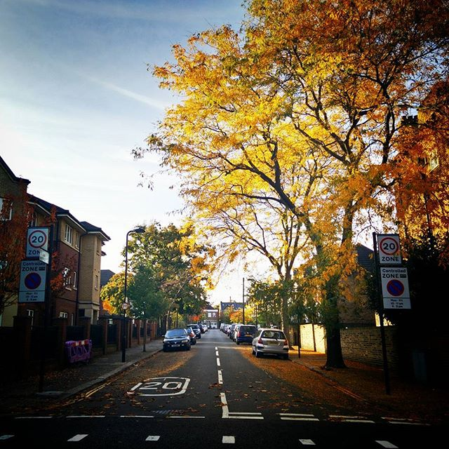 #Autumn is making its presence felt V2 #prettiestseason #ActonStreets #JulianAvenue #POTD