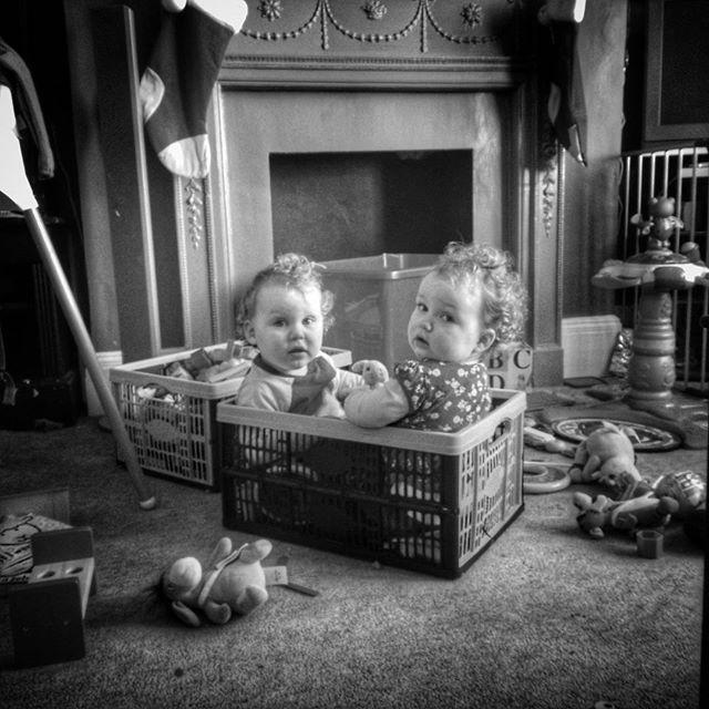 Two peas in a pod being taken literally. #Twins #twinsofinstagram #lookingguilty #POTD